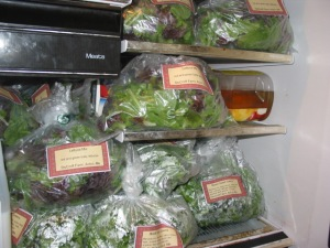 Fresh packed salad greens